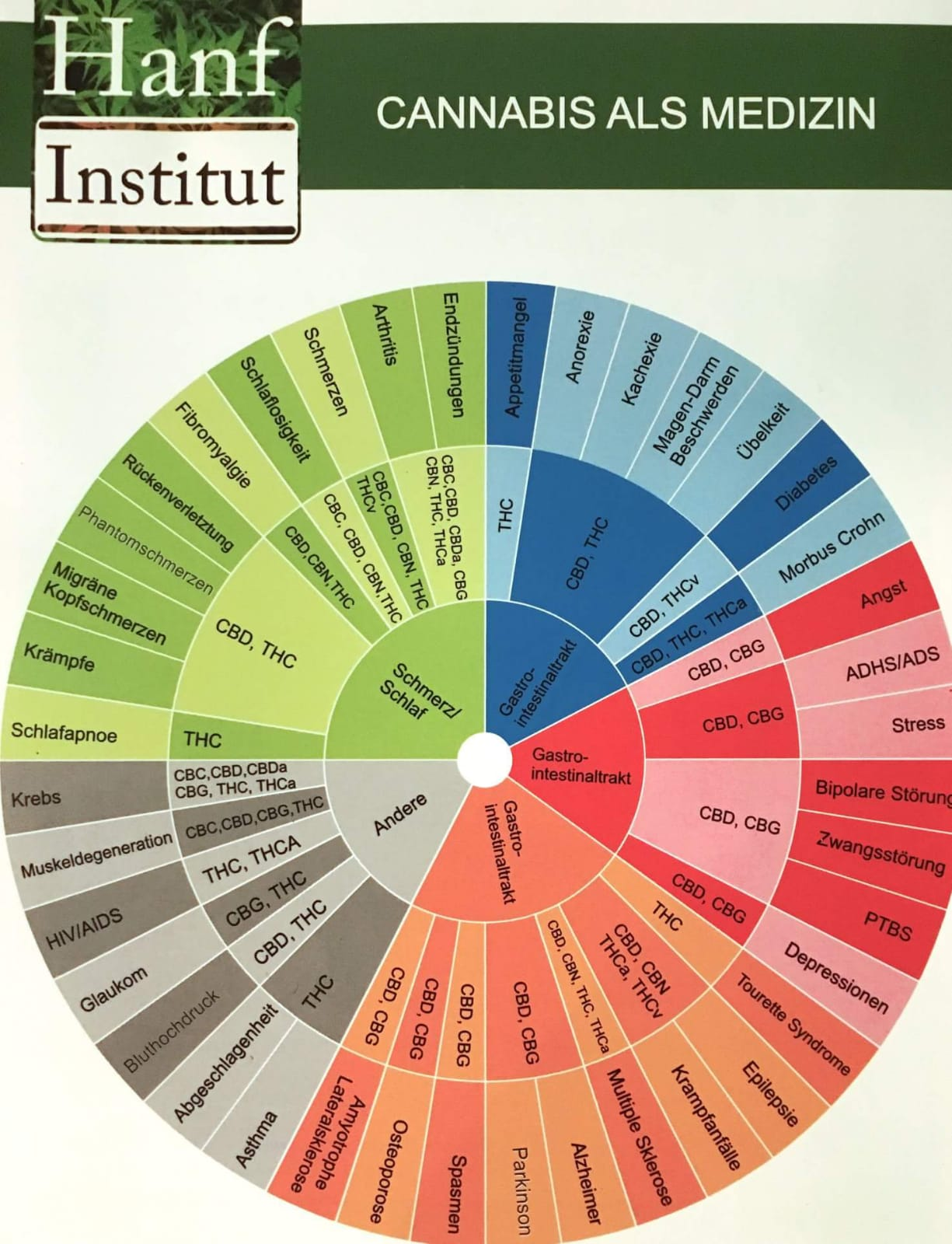 Medizinische Einsatzgebiete von CBD und anderen Cannabinoiden laut Hanf Institut (hanfinstitut.at)
